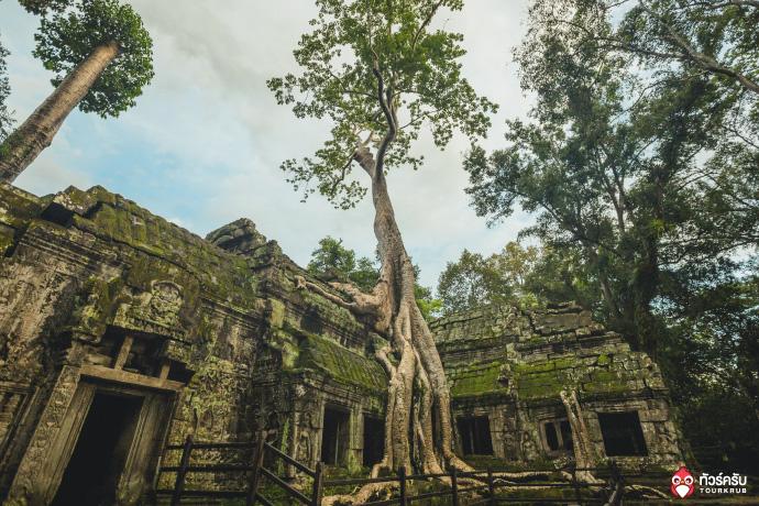 Cambodia_Angkor_wat_06.jpg