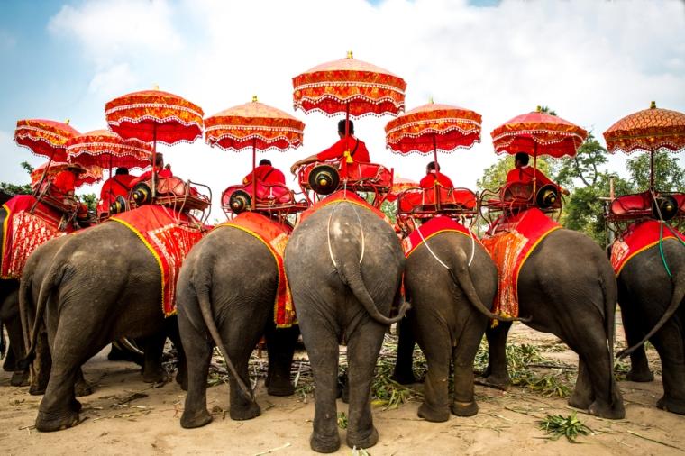 วังช้างอยุธยา02.jpg